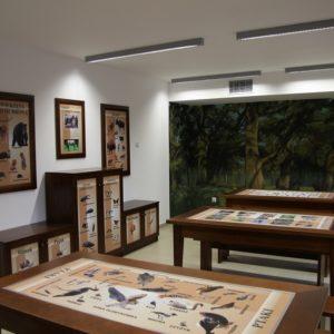 Ośrodek edukacji leśnej – fot U. Olejnicka