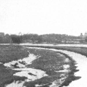 Widok na Cerkiew w Białowieży, fot. archiwum BPN