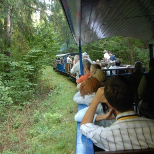 Na szlaku kolejki leśnej, fot. Nadleśnictwo Hajnówka