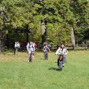 Rowerzyści w Nadleśnictwie Browsk, fot. Urszula Olejnicka