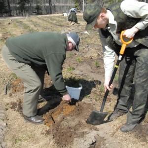 Sadzenie lasu - fot. M. Nowicka-Szpakowicz