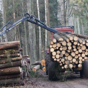 Załadunek drewna, fot. Klaudia Formejster