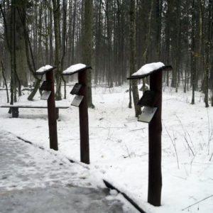 Szlak Dębów Królewskich, fot. Klaudia Formejster
