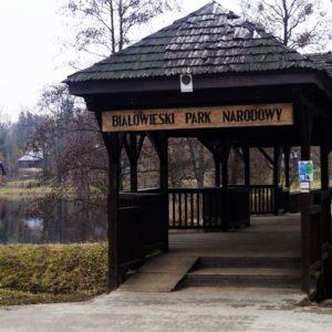Białowieski Park Narodowy, fot. Klaudia Formejster