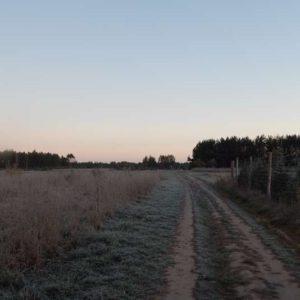 Łąka i ogrodzona uprawa, fot. Klaudia Formejster