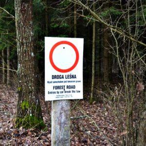 Zakaz wjazdu - znak ustawiony w lesie, fot. Klaudia Formejster