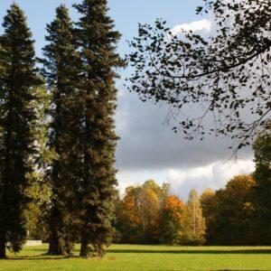 Park Pałacowy w Białowieży, arch. BPN
